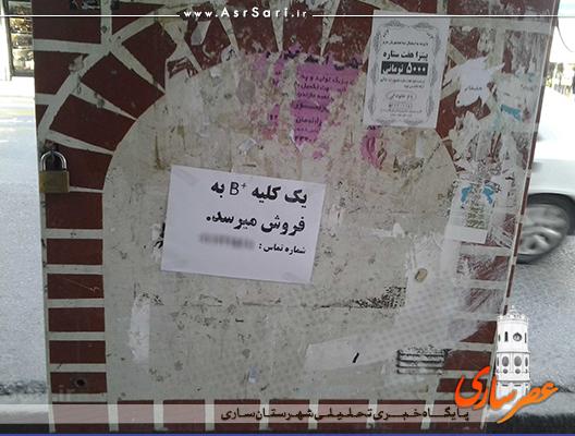 آگهی فروش کلیه در ساری+عکس