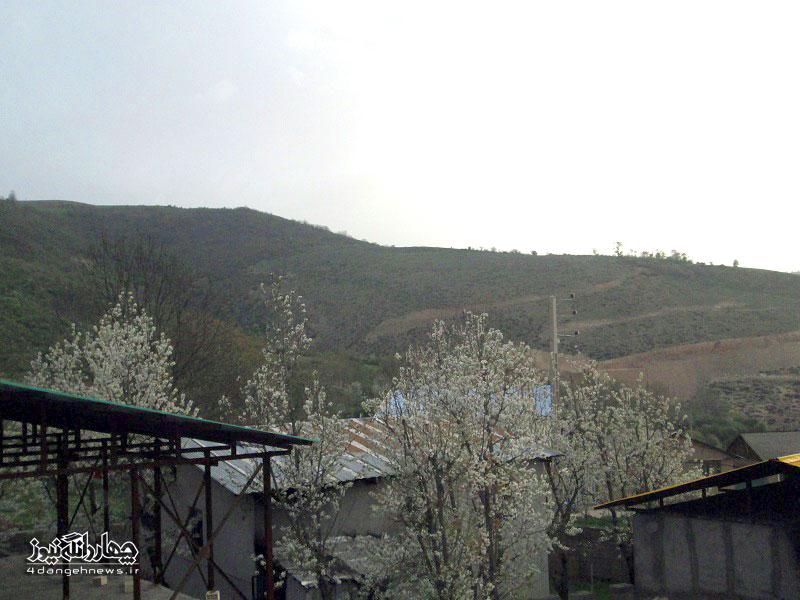 bahar-trkam-8