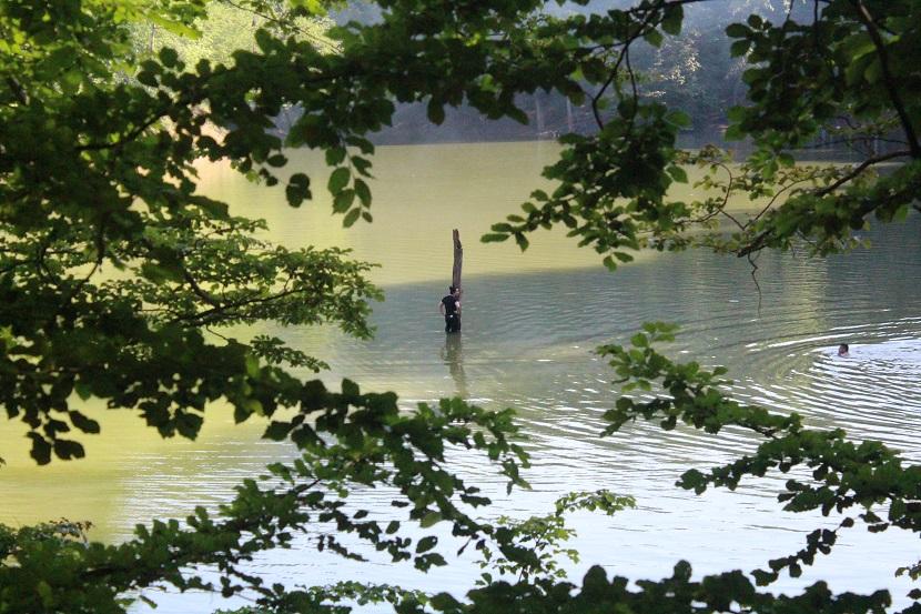 دریاچه میانشه در دل جنگل های بکر چهاردانگه + تصاویر