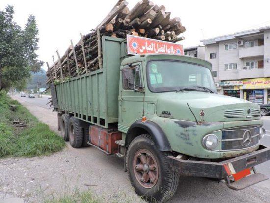 کشف ۲ تن چوب قاچاق در جاده ساری-کیاسر