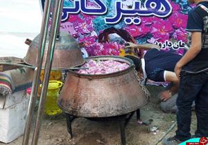 پیچیدن گلمحمدی کاشان در ساری/دودانگه، چهاردانگه و کلیجانرستاق در راس