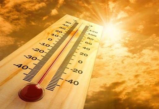 افزایش دما و احتمال آتش سوزی در جنگل های مازندران