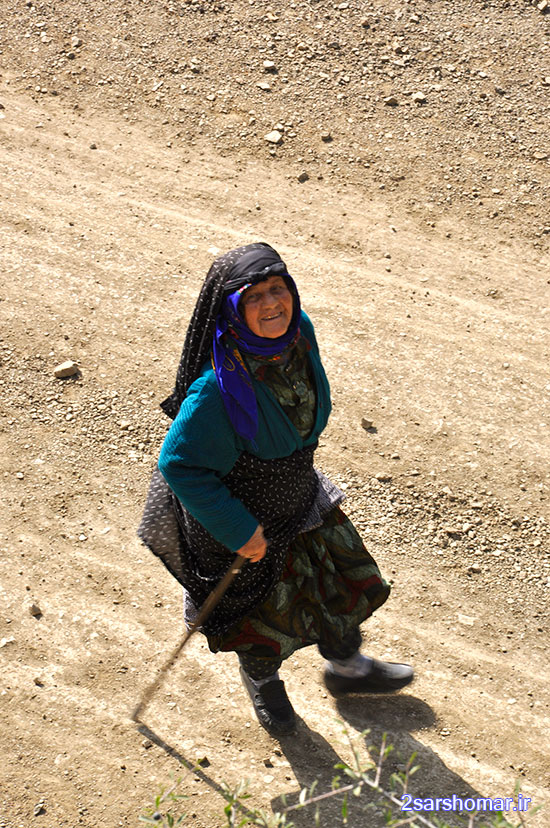 piaderavi-baladeh-8-5-1393-shahabi-4