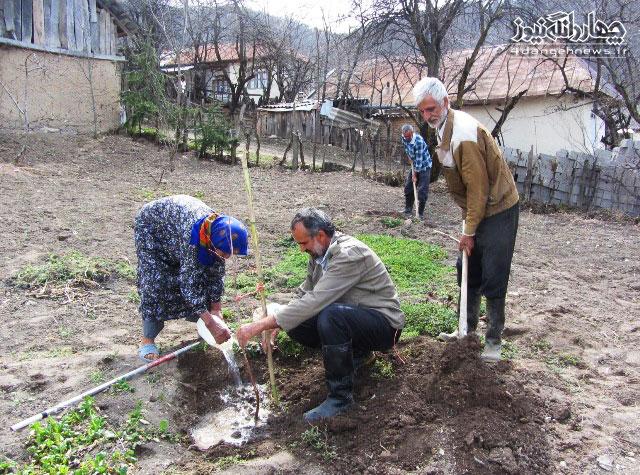 ارزیابی فعالیت موسسه مردم نهاد فضای سبز پایدار شمال (F.S.P)