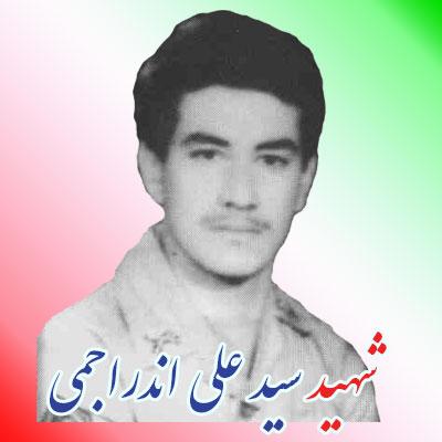 shahid-ali-andarajemi2