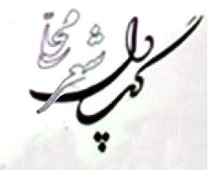 دل گپ/ شعری از خانم سیده ربابه ساداتی بالادهی