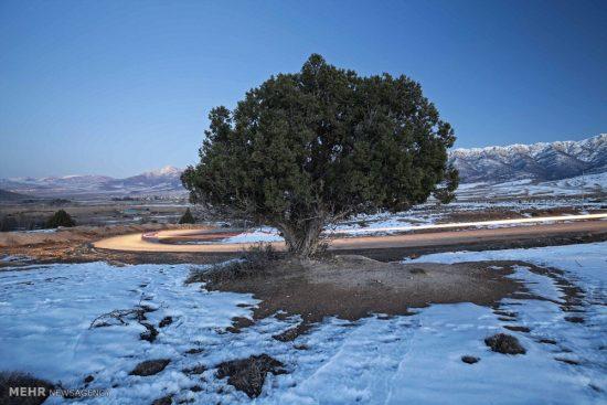 طبیعت زمستانی چشمه های باداب سورت